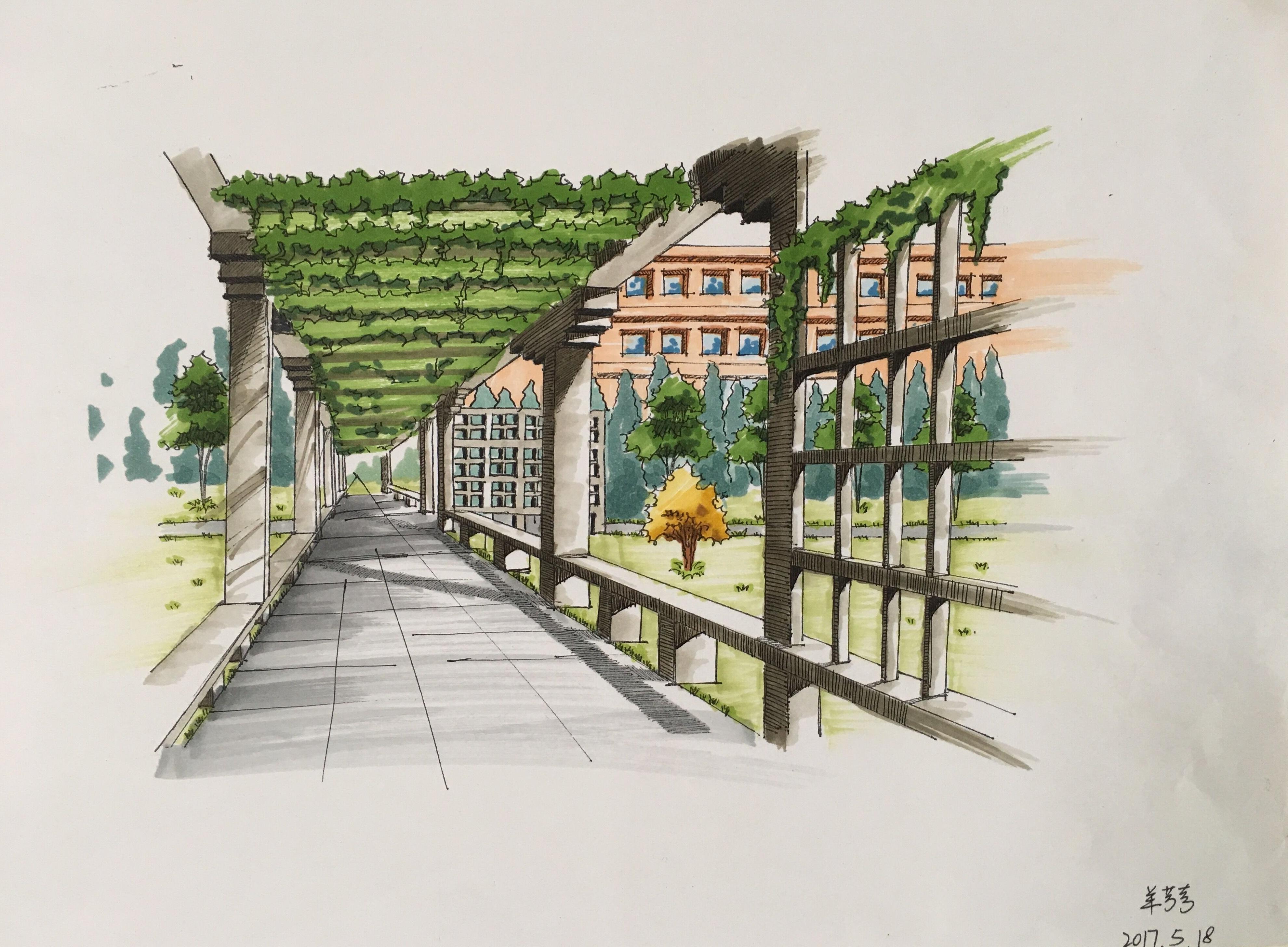 """园艺学院举办 """"我的科师梦""""校园风景手绘大赛"""